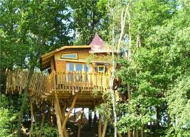 Adventure night Tree House Olves Tree Fortress