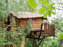 Tree House Hotel Adventure Night Germany Kulturinsel Einsiedel Fiona